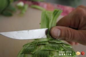 artichoke step 5